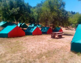 tiendas-campamento-de-la-torre